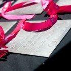 Sabrina Love Ocean Challenge 2011 breaks all records 155