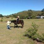 Horse-riding takes the Spotlight 10