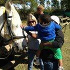 Horse-riding takes the Spotlight 3