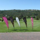 Sabrina Love Lion Roars Golf Day 2015 2