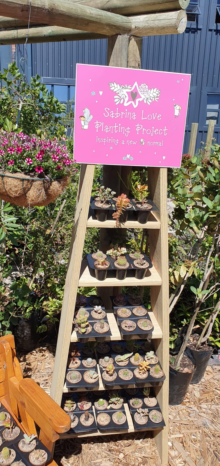 Sabrina Love youth cultivating succulents in biodegradable containers 8