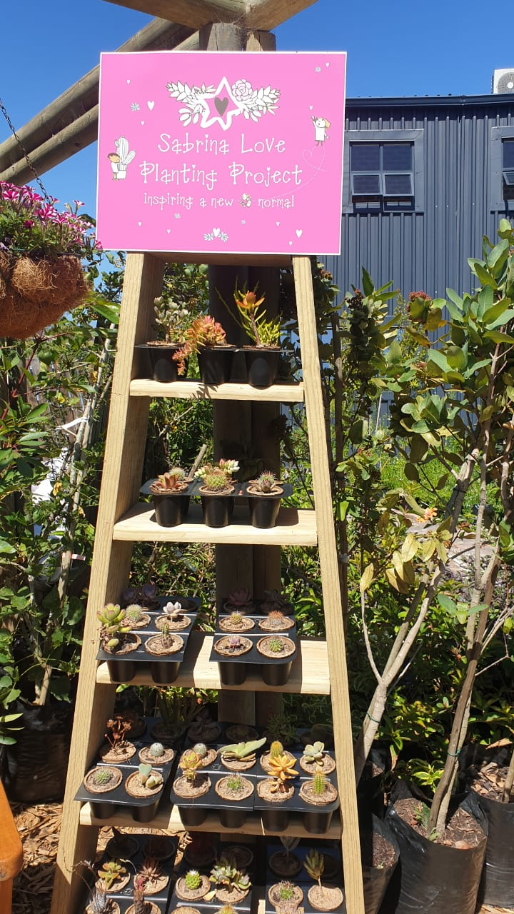 Sabrina Love youth cultivating succulents in biodegradable containers 16
